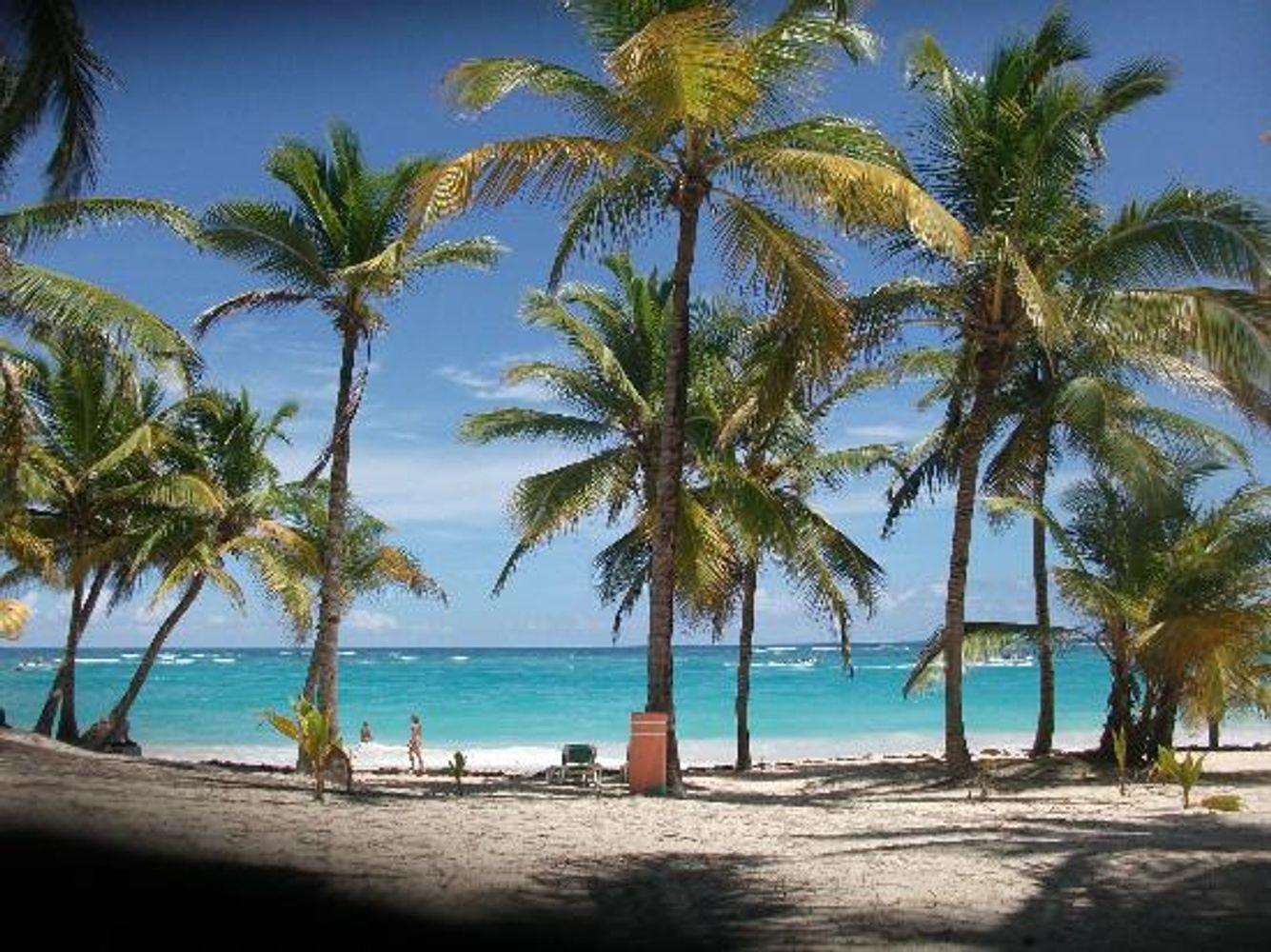 Dominican Punta Cana 8 days, Hotel Riu Palace Macao 5 * all inclusive