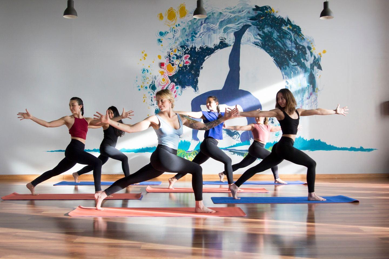 Flex & Flow 200 Hour Yoga Teacher Training