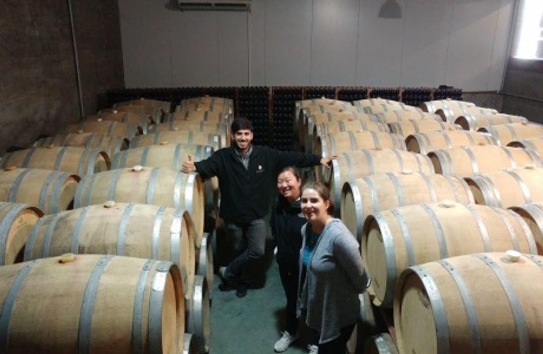 Montevideo Wine Tour