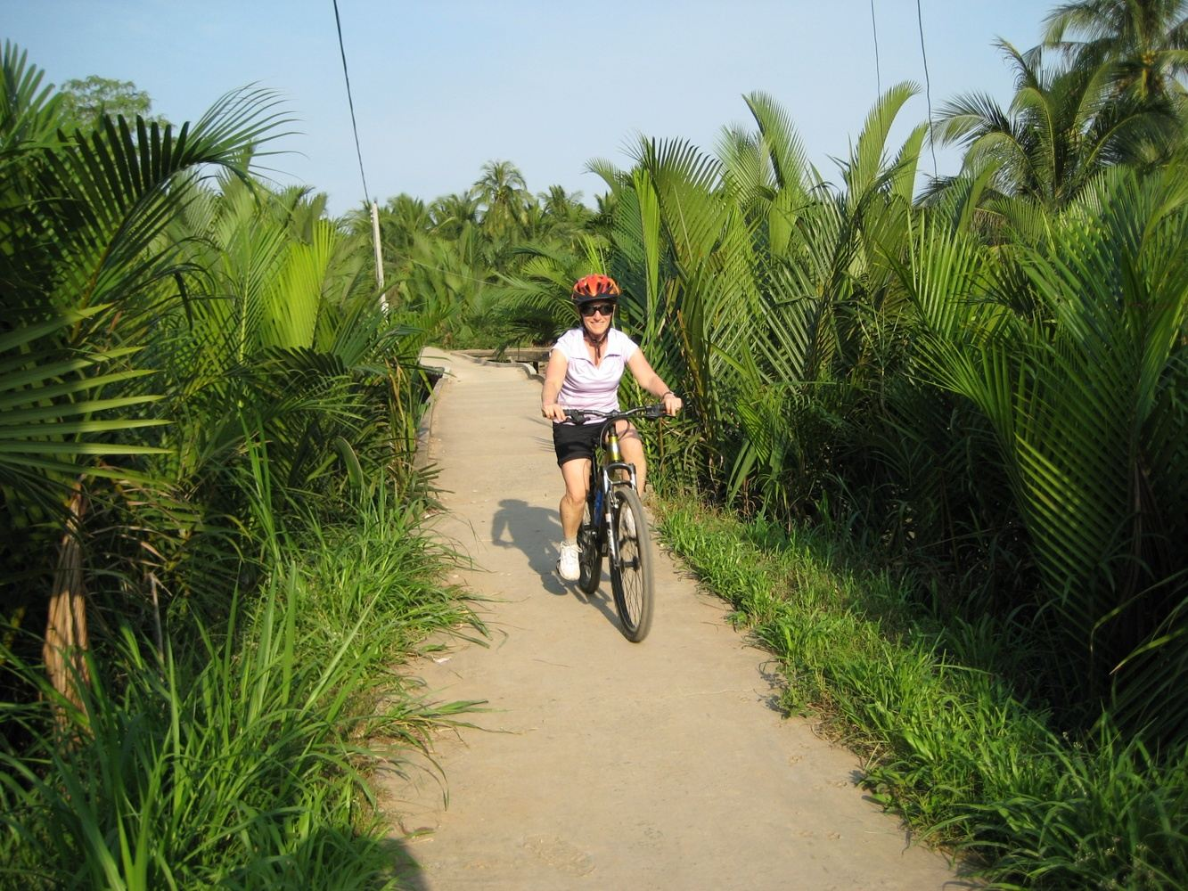 Meander the Mekong Delta by Bicycle