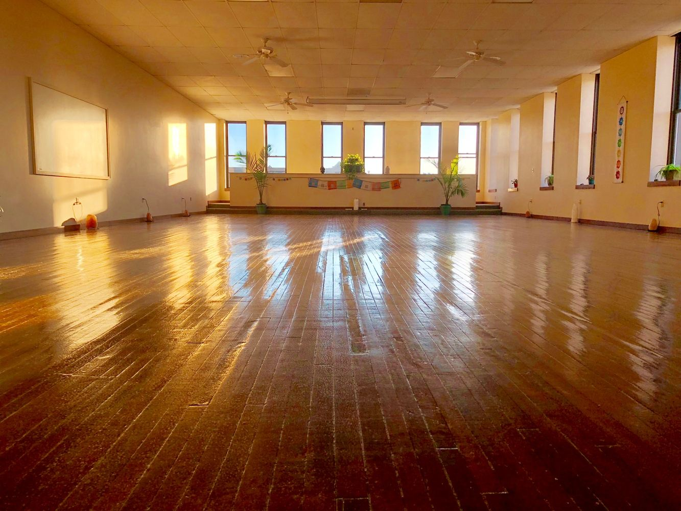 Erie - Satya Yoga Teacher Training