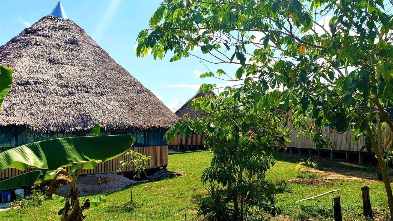 September 5 Ayahuasca Retreat with Optional Dieta