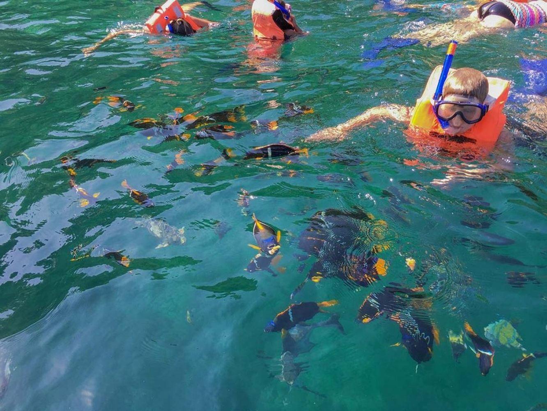 Join to Puerto Vallarta Trip