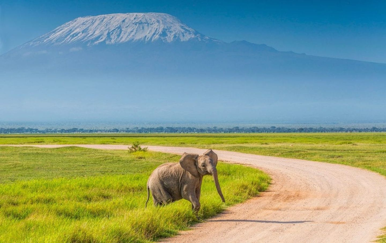 Amboseli Self Drive