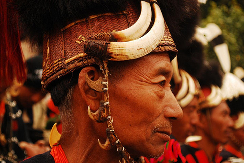 Luxury Camping Hornbill Festival Trip Nagaland