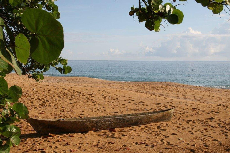 BOCAS DEL TORO  Panama - Bluff Beach Yoga Retreat