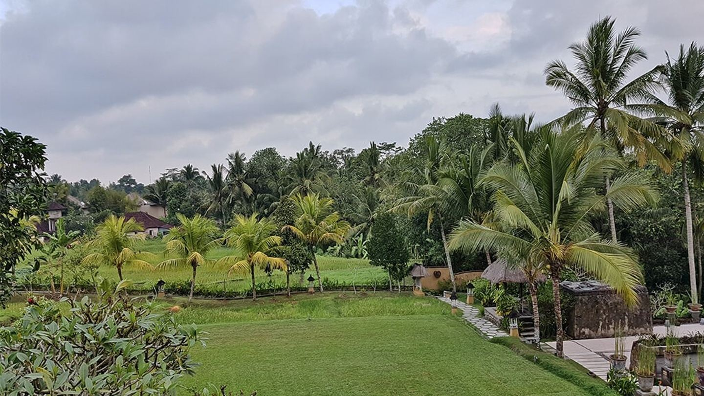 Visit & be Mesmerized with the Tranquillity of Ubud, Bali!
