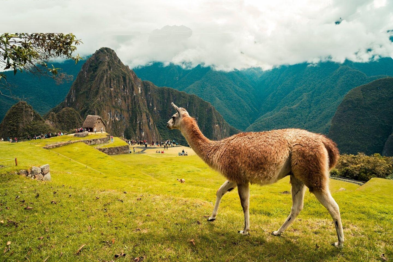 Peru Yoga Retreat + Machu Picchu