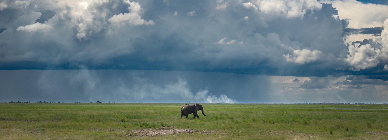 Botswana & Zambia