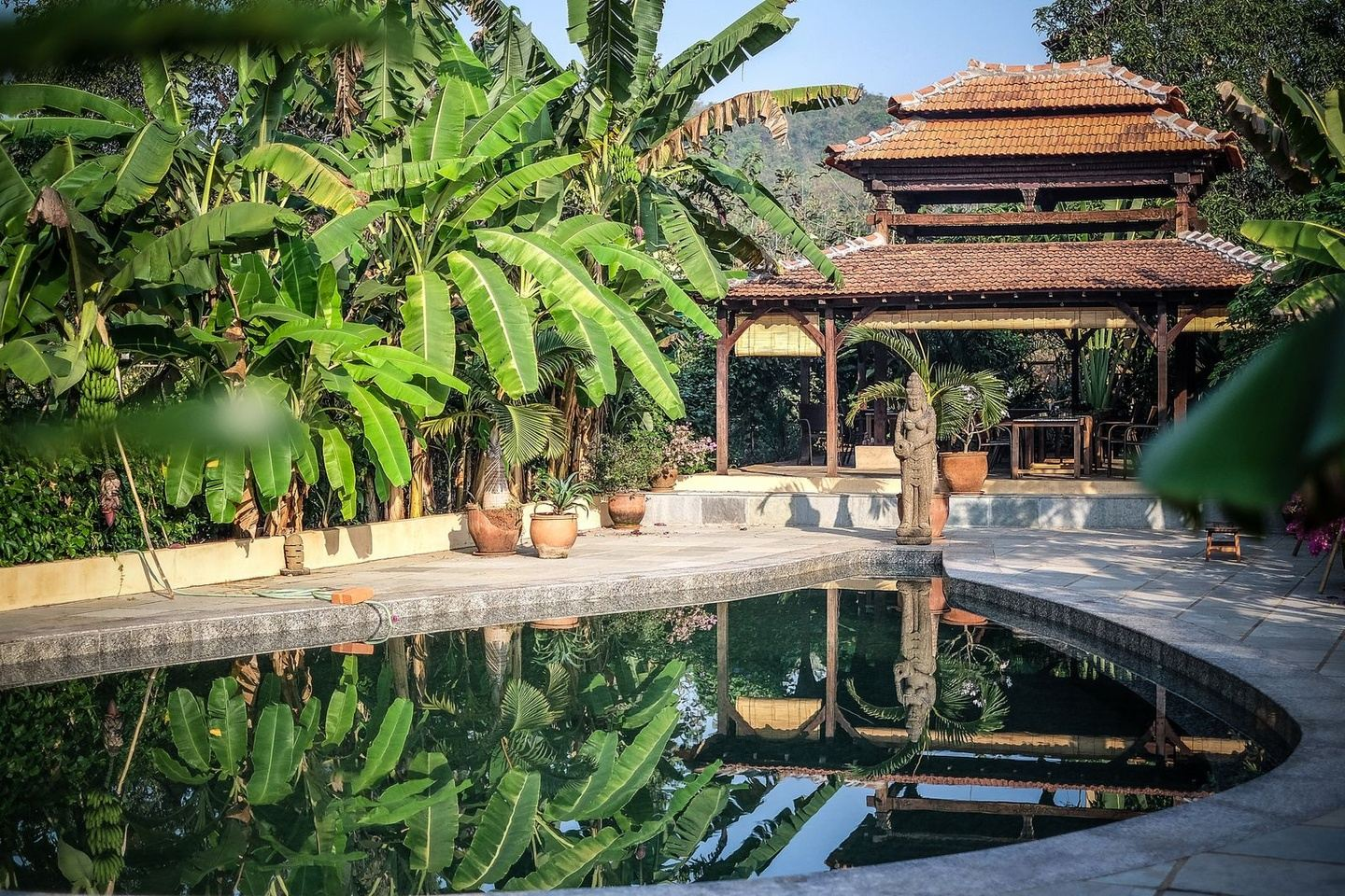 Heal your Body, Feed your Soul at Samata Goa India
