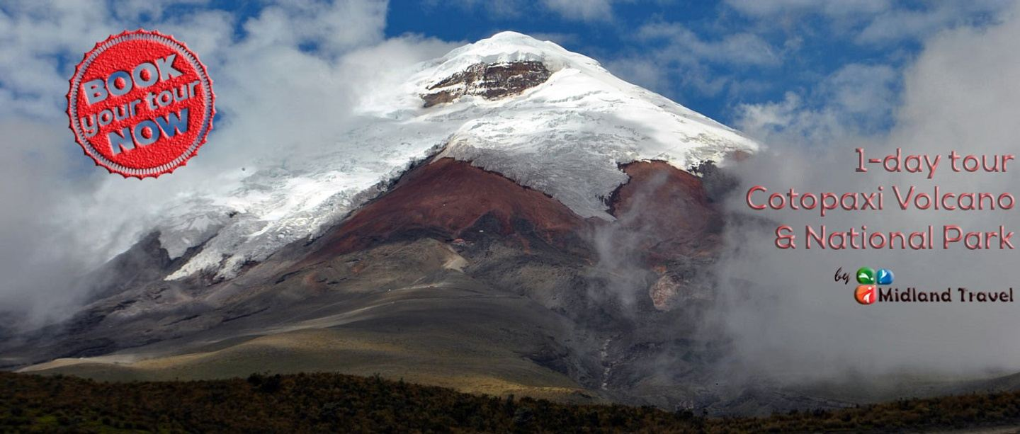 Shared Cotopaxi Day Trip from Quito