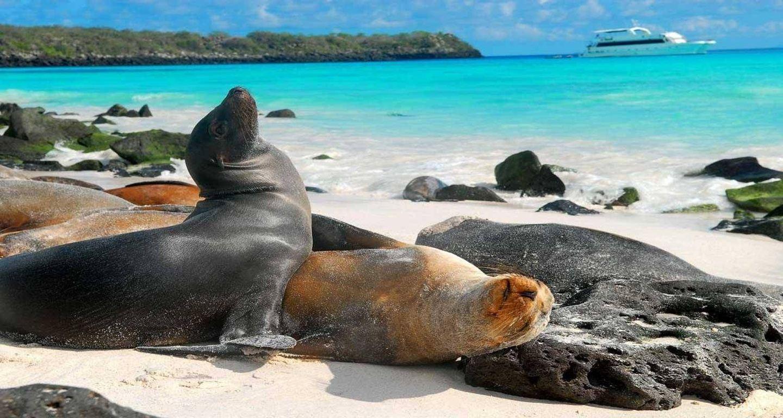 Galápagos Santa Cruz with Bahia Tour 5D/4N