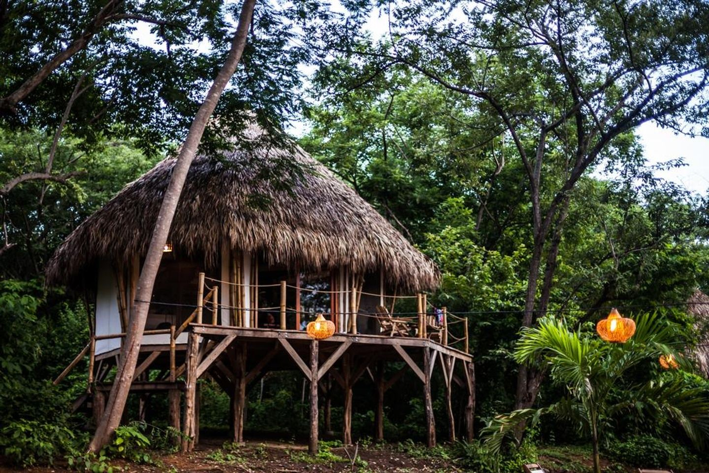 The Jungle Immersion : Yoga + Surf + Self Discovery