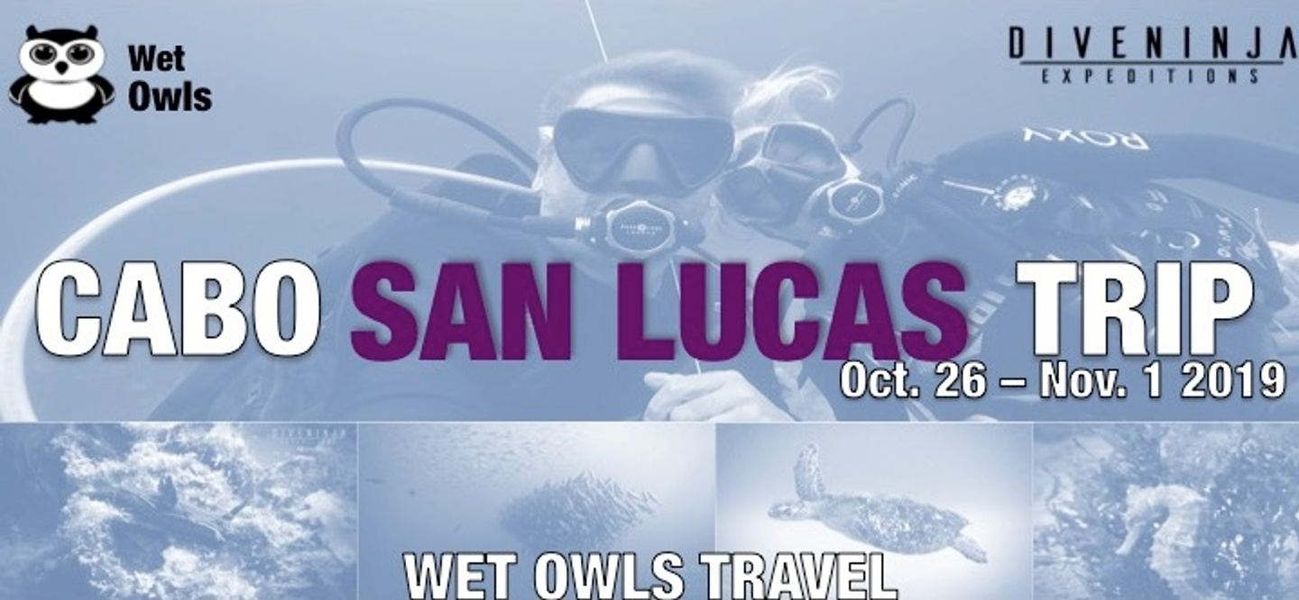 Travel with the Wet Owls to Cabo!