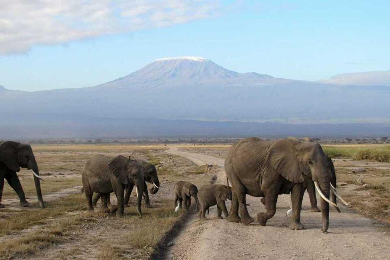 6-Day Classic Kenya Safari