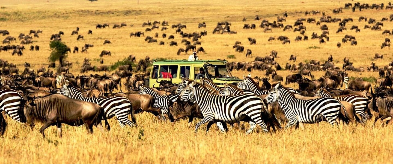 Epic, Serengeti Expeditions