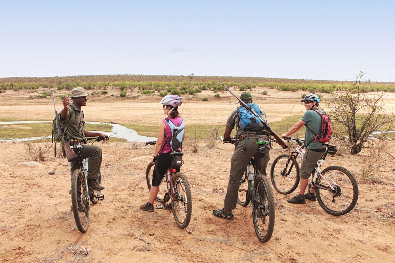 Kruger MTB Safari