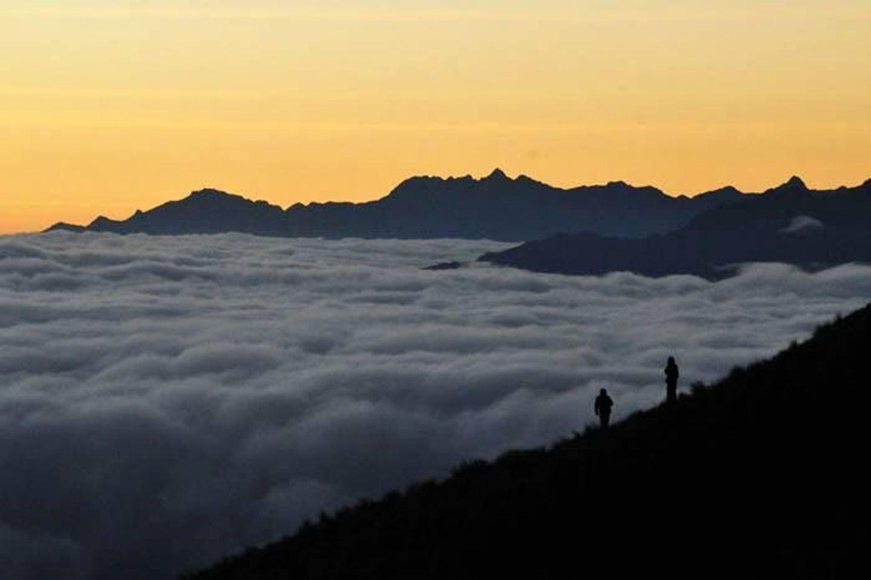 Manu cloud forest and Mini inca trail to Machu Picchu