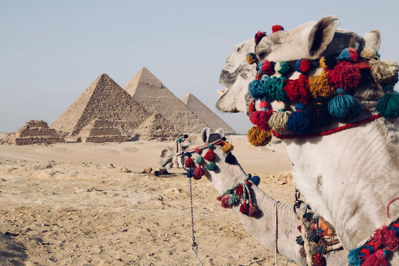 Egypt & Israel Outreach 2021