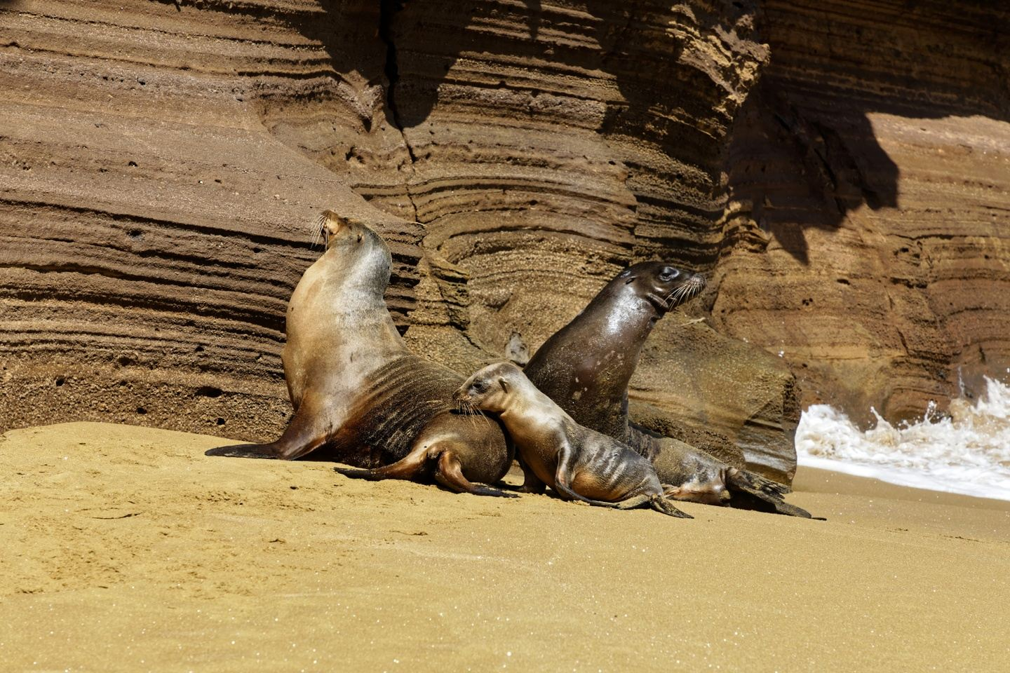 Galapagos island hopping from east to west