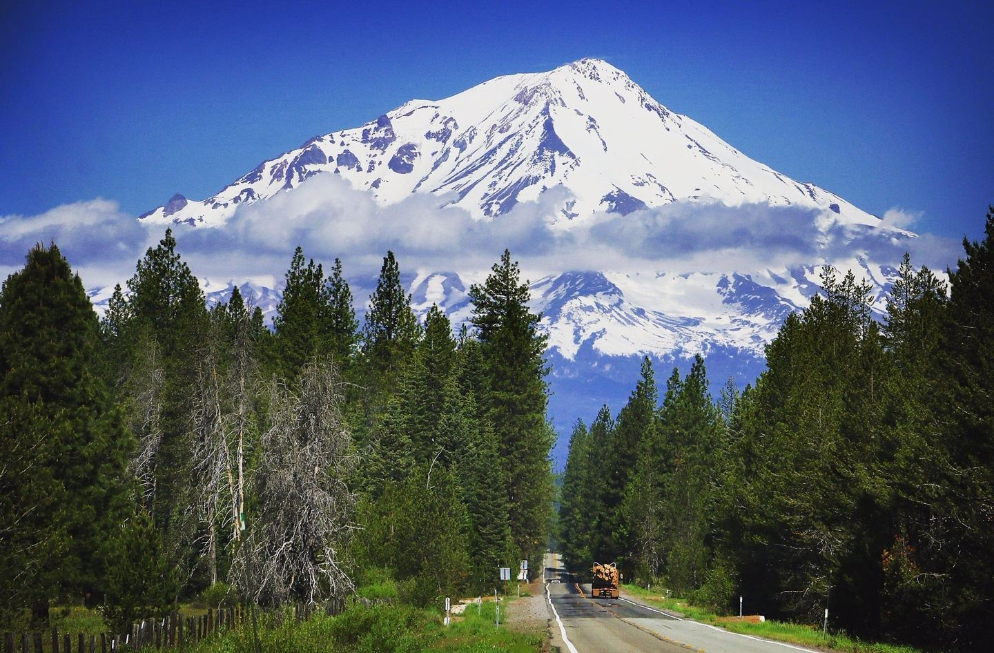 Mt. Shasta Sister's Self-Realization & Empowerment Gathering