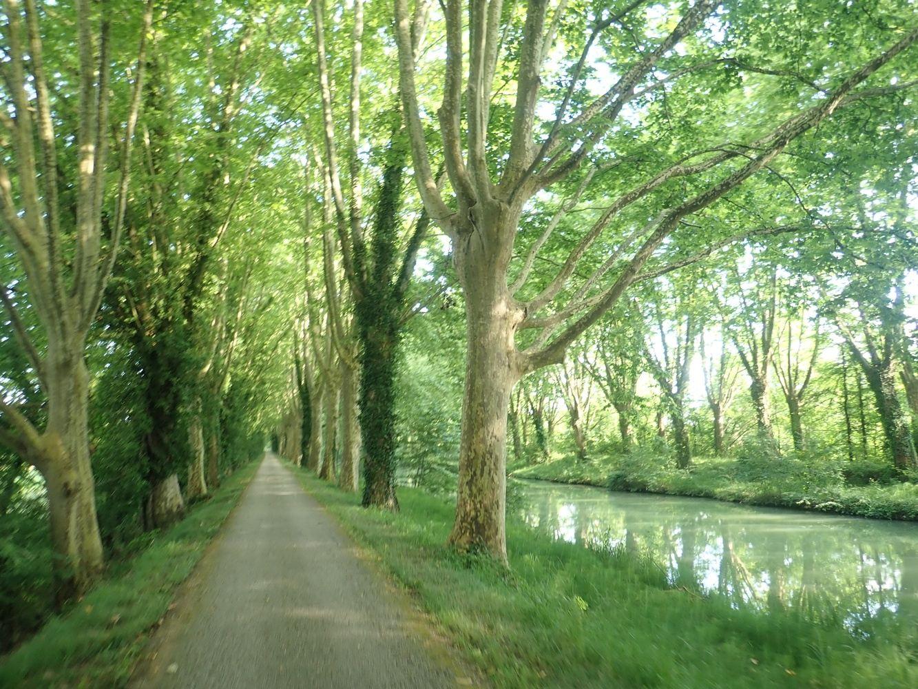 Toulouse - Montpellier en vélo : Le Canal du Midi et la Méditerranée