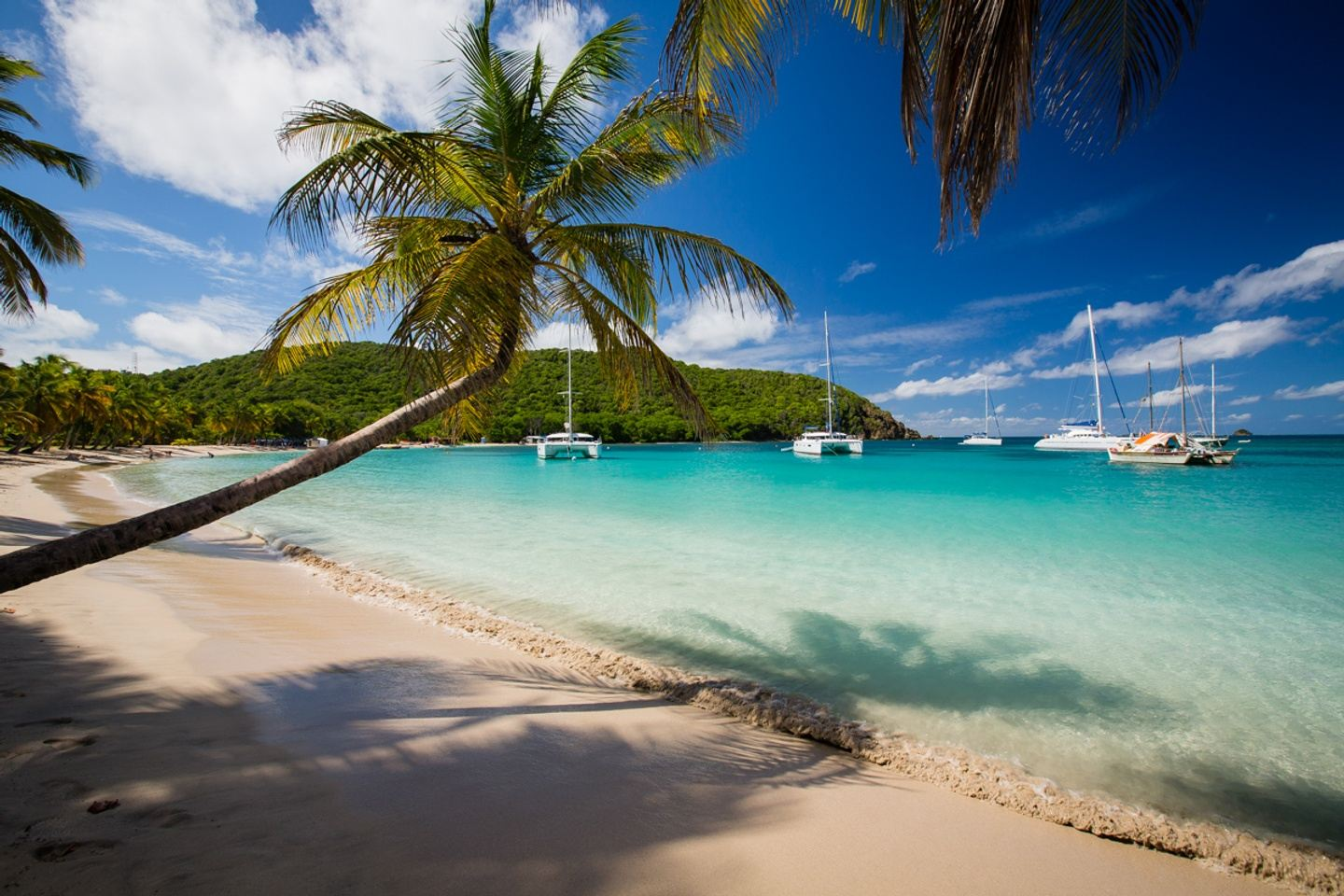 Caribbean adventure: In the footsteps of Jack Sparrow