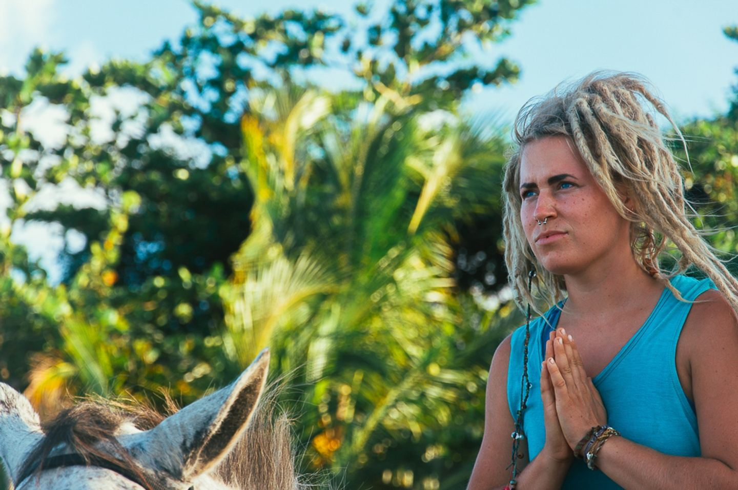 Yoga with Horses: A Personal Transformation Journey in Costa Rica