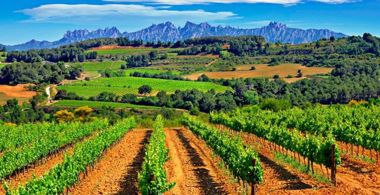 Villages & Vineyards - Penedes