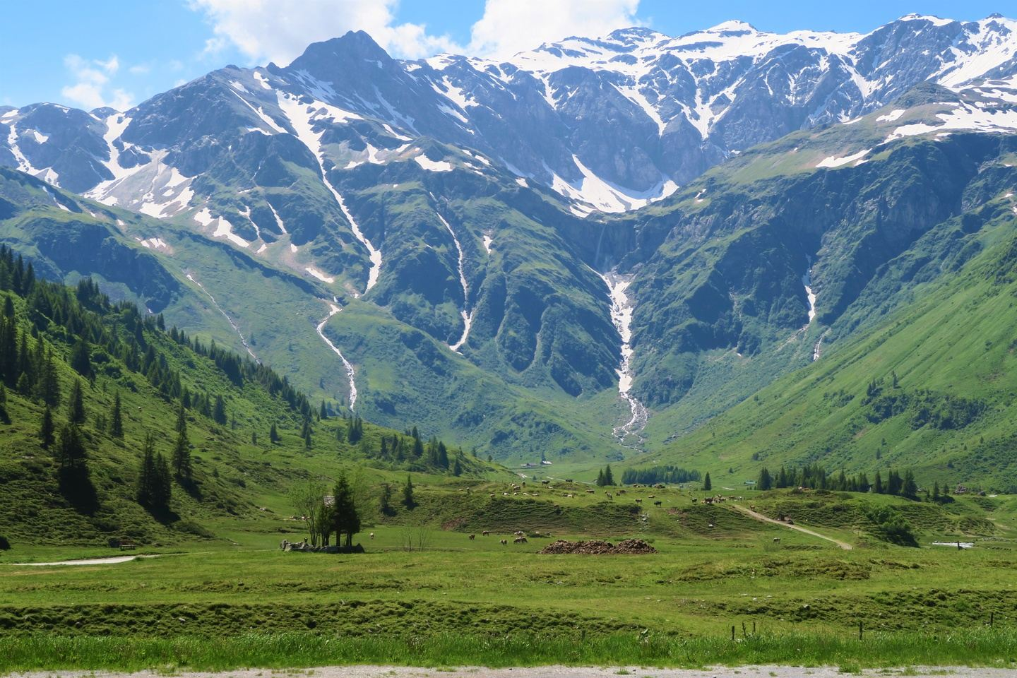 7 Day Austrian Alps Yoga, Hot Springs, E-bikes & Forest Explorations