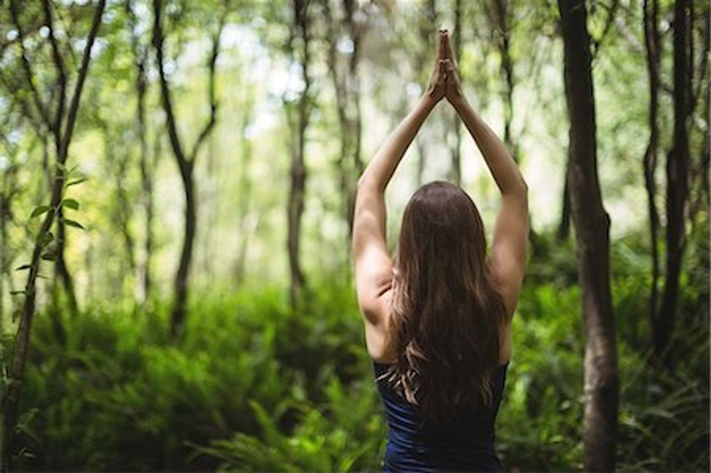 RECONNECT + REVITALIZE: 3 Day Yoga Retreat