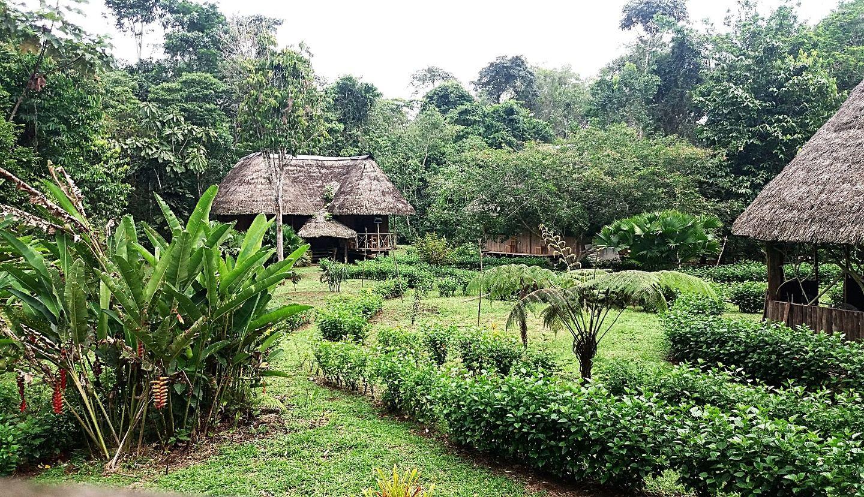 AMAZON LODGES NAPO RIVER