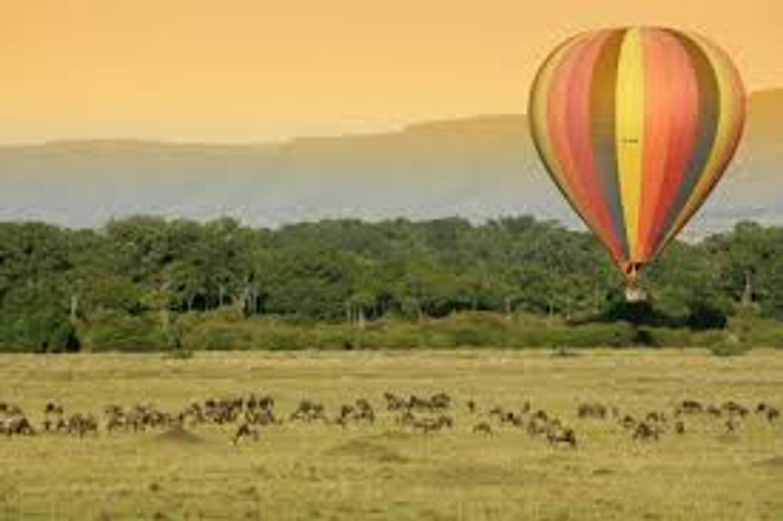 Big 5 Safari-Kenya