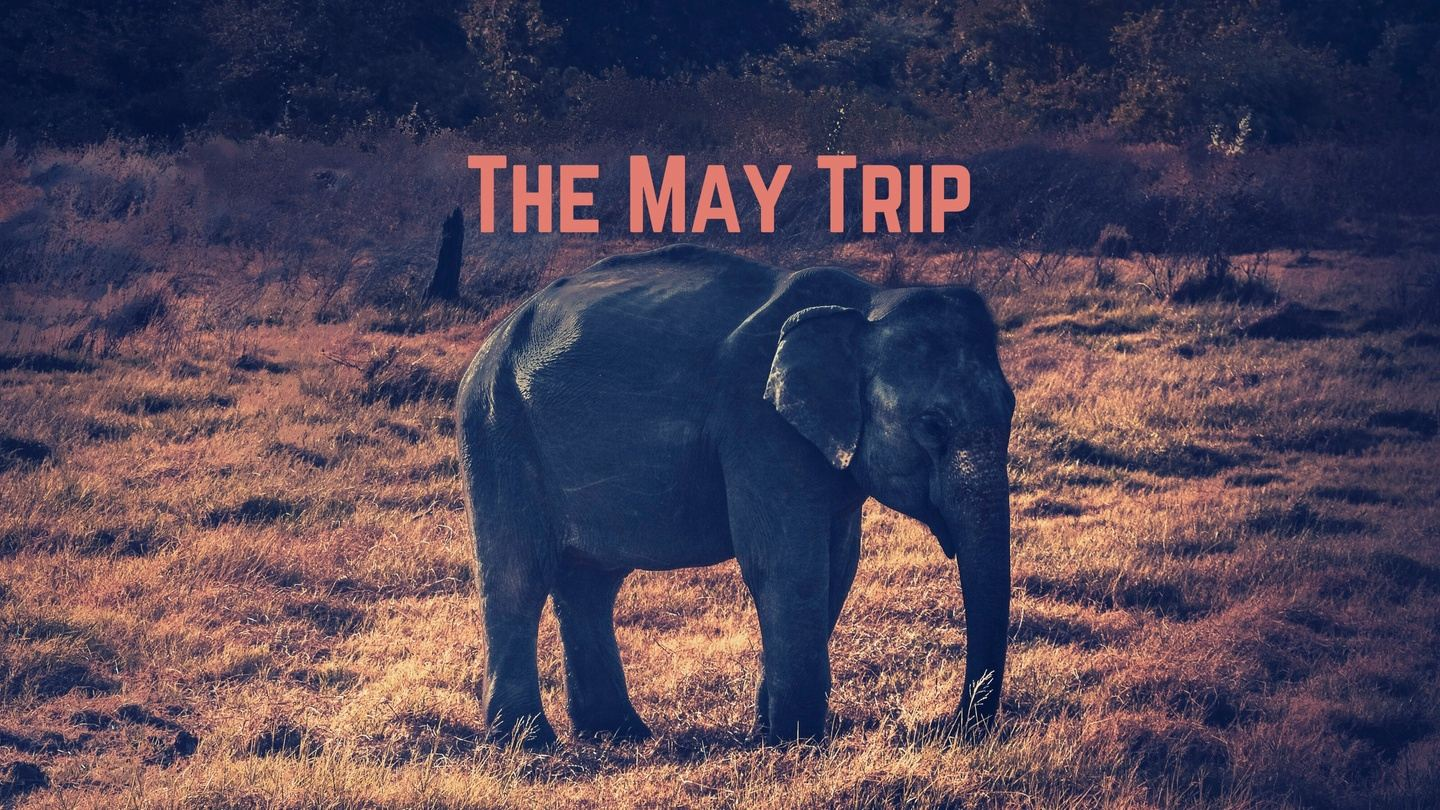 Travel Ain't Pretty: The May Trip