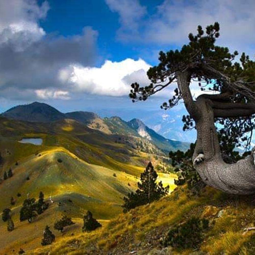 Τριήμερο 28ης Οκτωβρίου στον Σμόλικα - Δρακόλιμνη - Φαράγγι Αώου