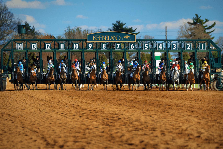 Bluegrass Experience-Golfing, Bourbon and Horse Racing