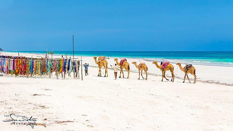 Mombasa Beach Holiday Experience
