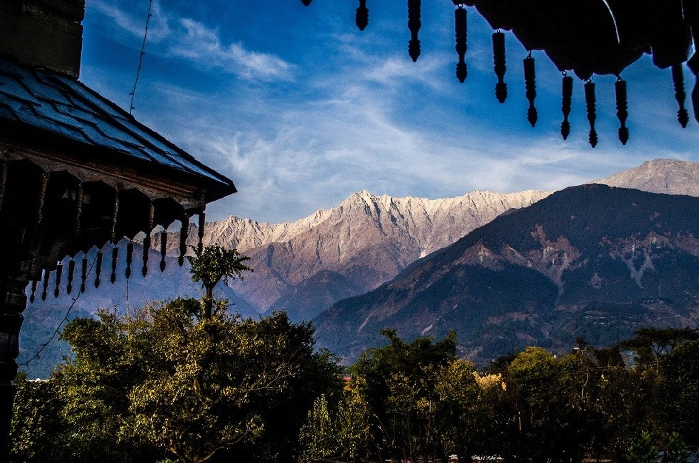 8 Day Himalayan Foothills Yoga, Meditation, and Compassion Retreat