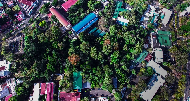Jungle Campus Tour (Group) (copy)