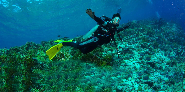 Diving Punta Carrion & Gordon Rocks.