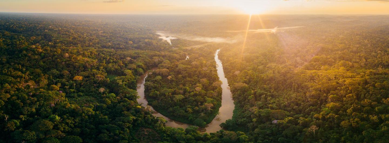 Rainforest Immersion July 2021 - ($3,895)