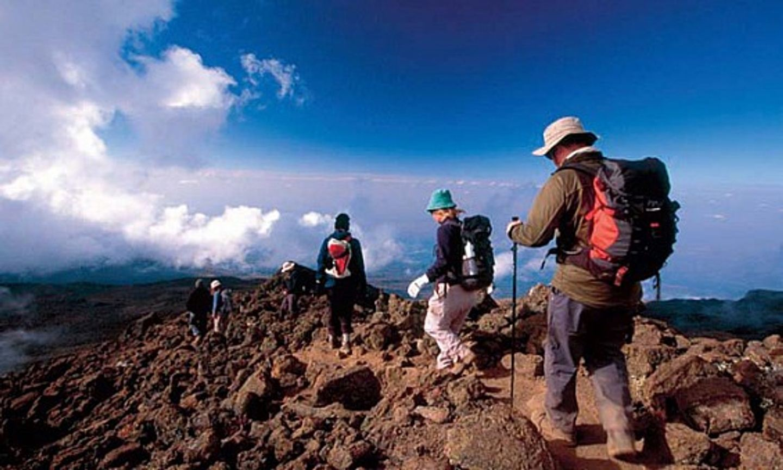 Mt. Kiliamanja Trek