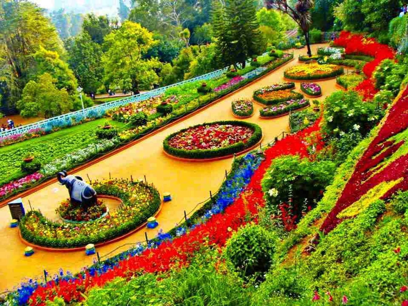 Discover Ooty Holiday Package for 3 Nights & 4 Days (copy)