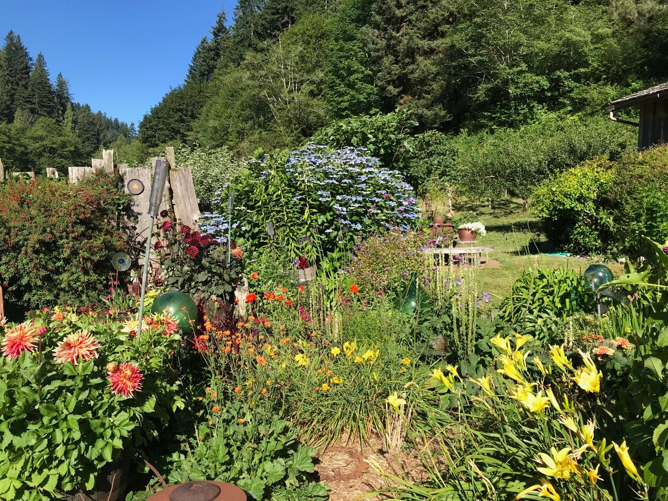 CONNECTION AND BELONGING: A NATURE-BASED MEDITATION RETREAT