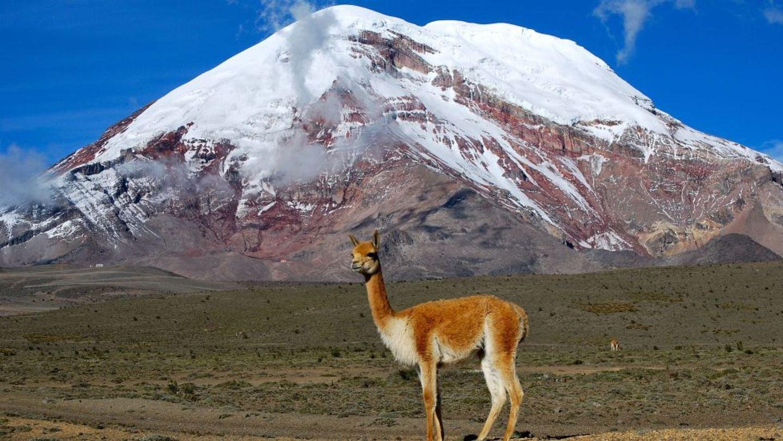 Promocion Grupal Volcan Chimborazo