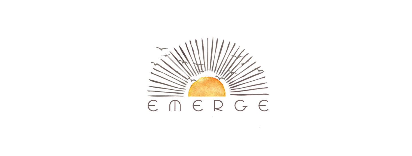 EMERGE (summer session)