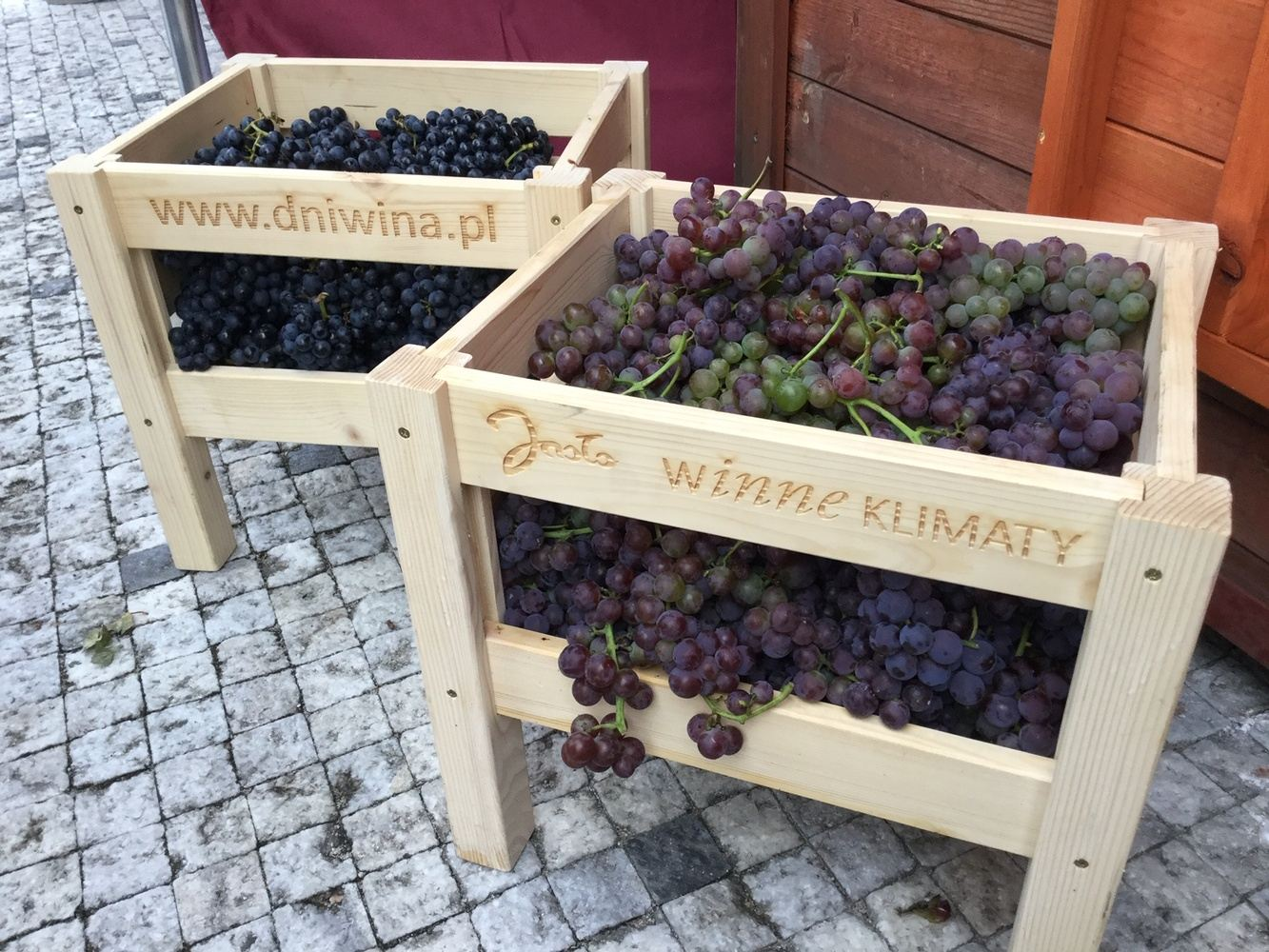 Five Days with Polish Wine in Subcarpathia