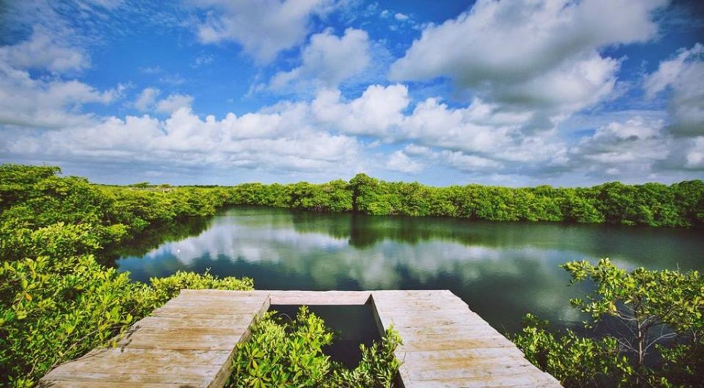 A 5 Day Wellness Immersion In The Jungles Of Tulum