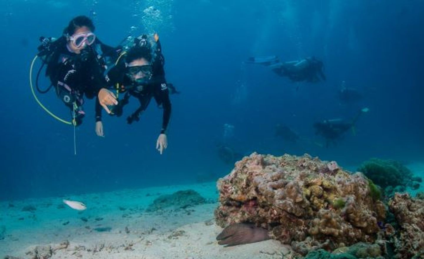 Deposit for your DIVE MASTER training with Bubble Addict