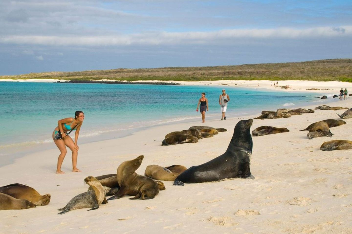Mission Paradise + Spanish classes on the Galapagos Islands